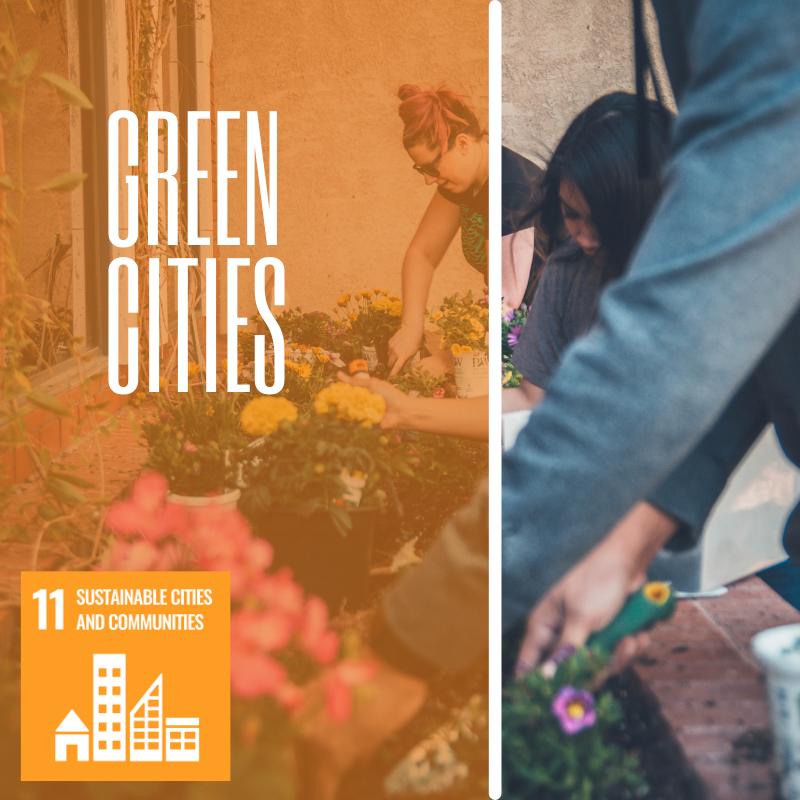venture studio green cities